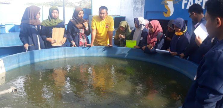 FPK UNAIR Laksanakan Praktikum Lapangan di Sidoarjo dan Probolinggo