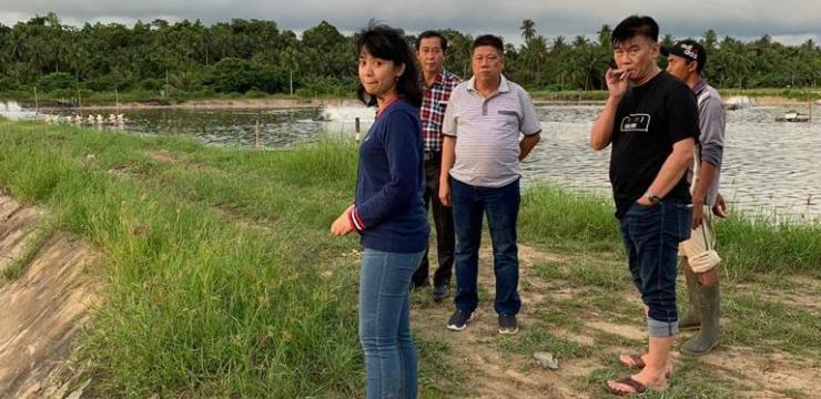Menggandeng Stake Holder, Dosen FPK UNAIR Kunjungan Potensi Tambak Udang Vanname Ke Kalimantan Barat