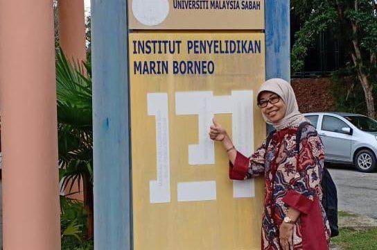 TIMBA PENGALAMAN OUTBOUND KE UNIVERSITI MALAYSIA SABAH