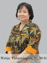 Wahju Tjahjaningsih, Ir., M.Si